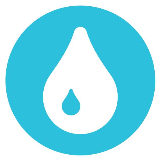 Baptism Icon
